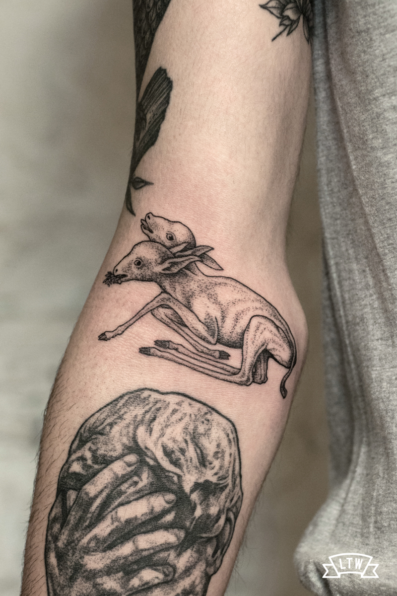 Lamb with two heads done by Andreu Matallana