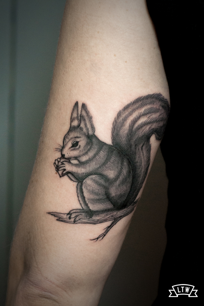 Squirrel tattooed by Dani Cobra in black and grey