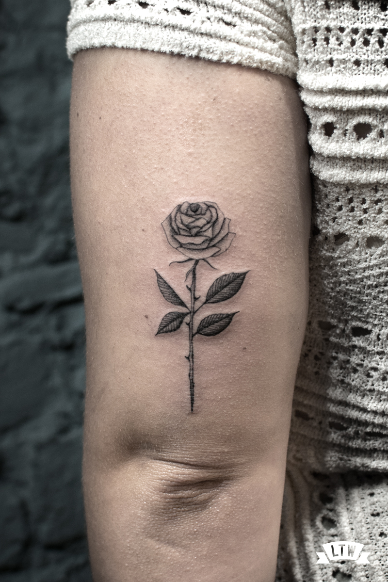 Rose tattooed by Dani Cobra